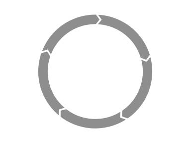Product Life Cycle Icon