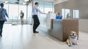 360 magazine womble carlyle workplace redesign