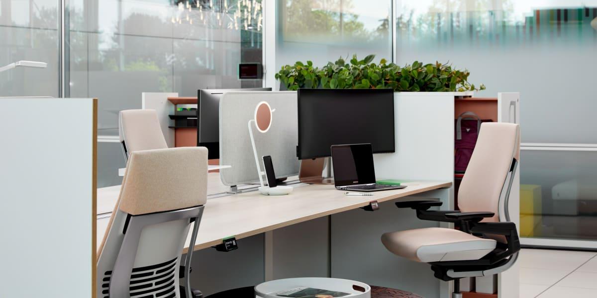 Deskwizard