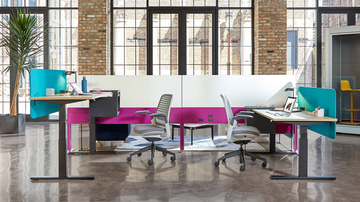 Two individual workstations featuring Steelcase height-adjustable desks, Series 1 desk chairs, Sarto screen, and Answer Fence