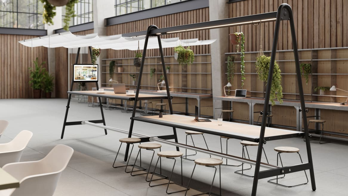 Amai Collection by Extremis